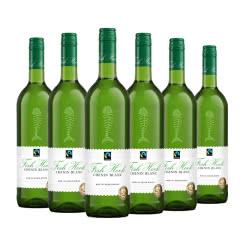 南非渔人酒庄白诗南白葡萄酒 750ml(6瓶装)