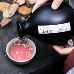 12°三生三世十里桃花酒桃花酿低度女士酒果酒少女甜酒500ml