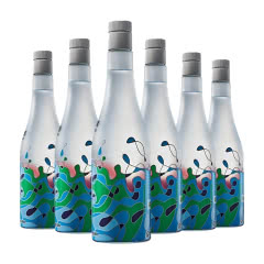 沱牌酒艺术沱牌泳池-蓝50度480ml*6瓶装